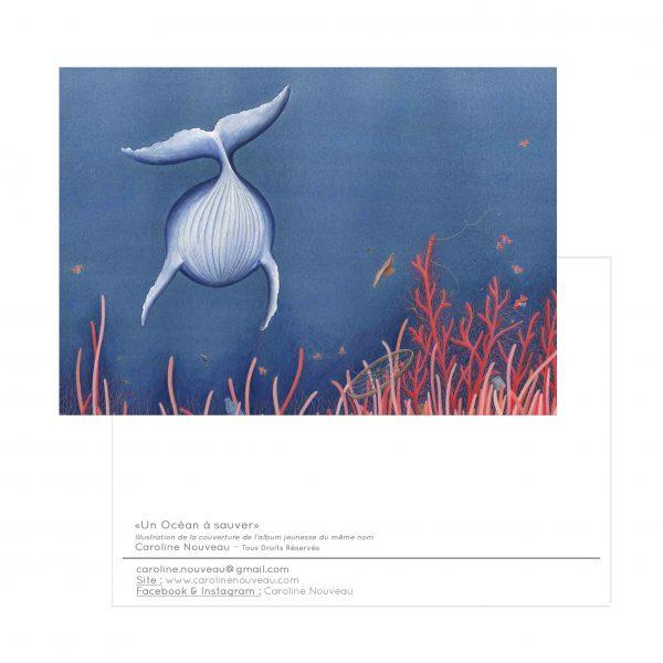 carte animal baleine ocean mer bleu corail déchets cétacé