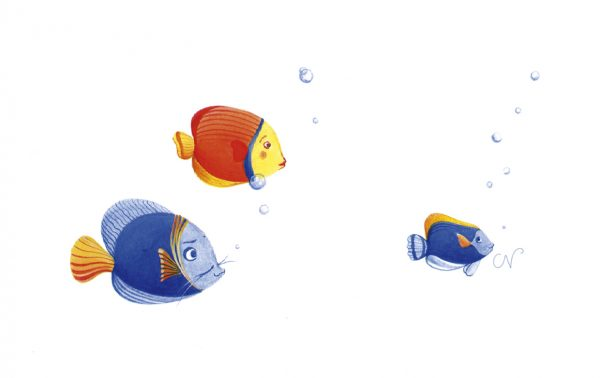 illustration peinture dessin poisson bulle enfant
