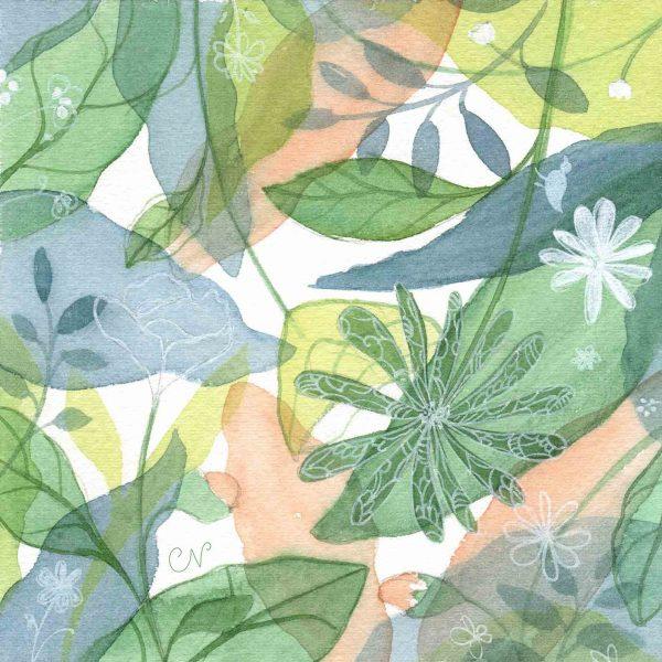 illustration dessin peinture fleurs nature feuilles
