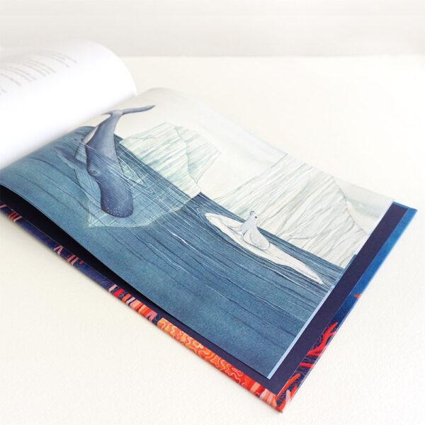 dessin livre enfants ocean dechets banquise otarie baleine